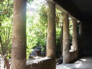 columns-at-pompeii