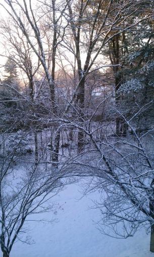 Winter day in Massachusetts