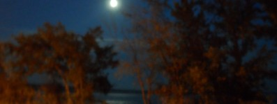 cropped-night-with-moon1.jpg