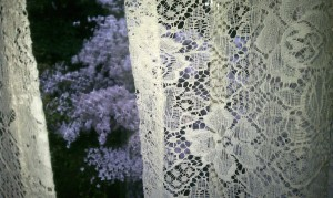 lace-and-dogwood