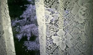 lace-and-dogwood